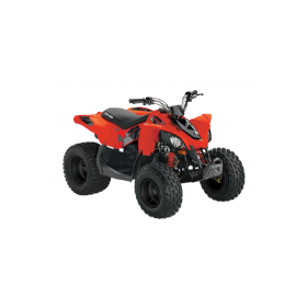 Can-Am DS STD 90 Röd Terräng 2020