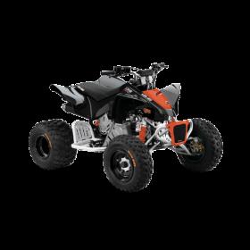 Can-Am DS X 90 Svart/Röd Terräng 2020